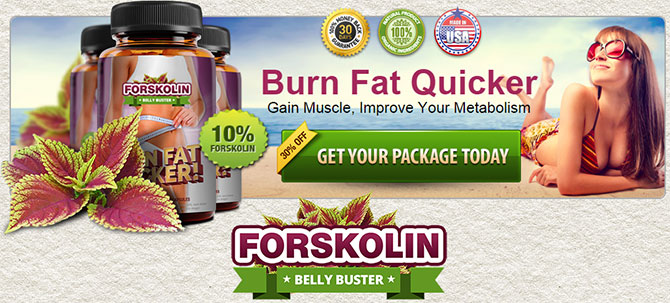 buy Forskolin Belly Buster