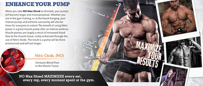 no max shred supplement
