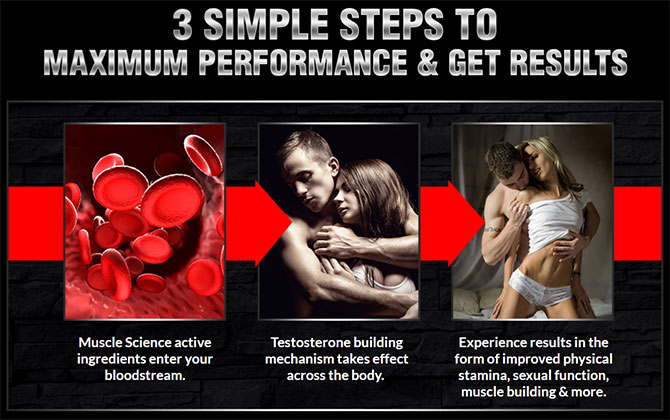 muscle science supplement